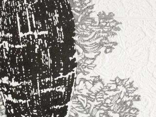 landschapbladdetailCarien Vugts, kunstenaar, werk-in-situ, tekeningen, wandobjecten, recent works, drawings, objects, work in situ, installaties, site specific art